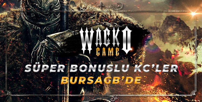 https://www.bursagb.com/wacko-game/